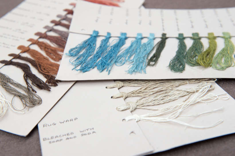 Her hand coloured samples